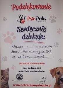 PSIE_pole